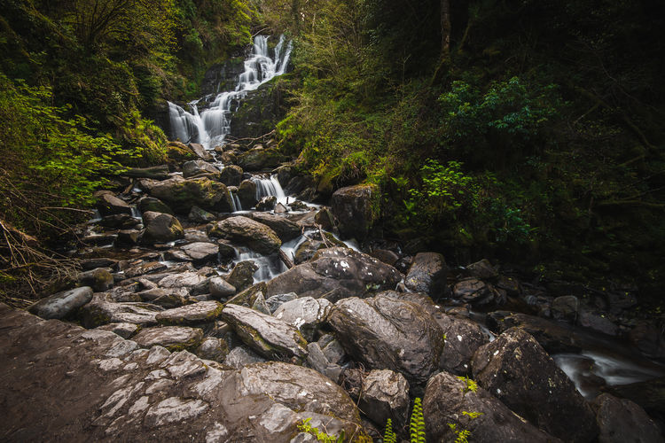 Rock Solid Rock - Object Forest Tree Water Land Flowing Water Long Exposure Beauty In Nature Plant Motion Waterfall Scenics - Nature Nature No People Flowing Blurred Motion Growth Outdoors Stream - Flowing Water Rainforest Ireland Torc Waterfall