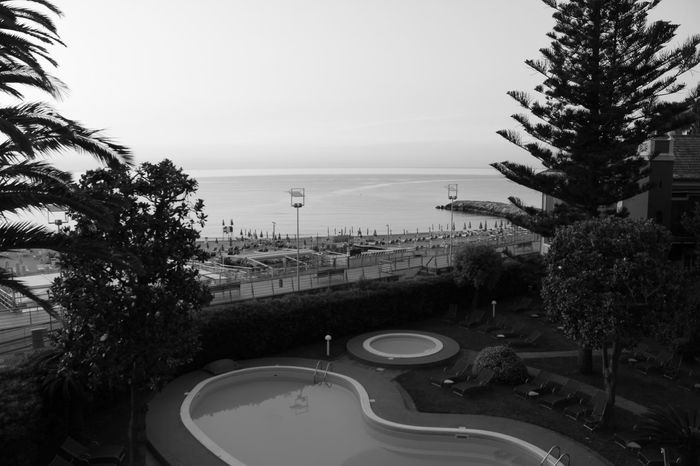 Relaxing calm balcony view - feels good, doesn't it? ;-) Holidays ☀ Liguria,Italy Loano Black And White Photography Day Day Off ❤ Daydreaming Family Time Freshness High Angle View Hotel View Italy❤️ Leisure Time Looking Nature No People Outdoors Palm Tree Pool Sky Time Machine Tree Water
