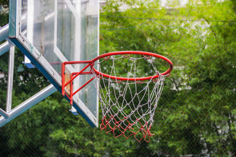 Close-up of basketball hoop against trees
