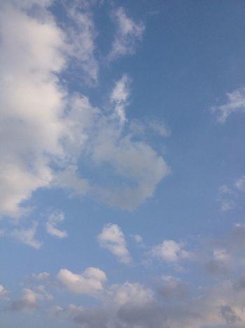 今撮った空。ただ晴れてるだけの空。