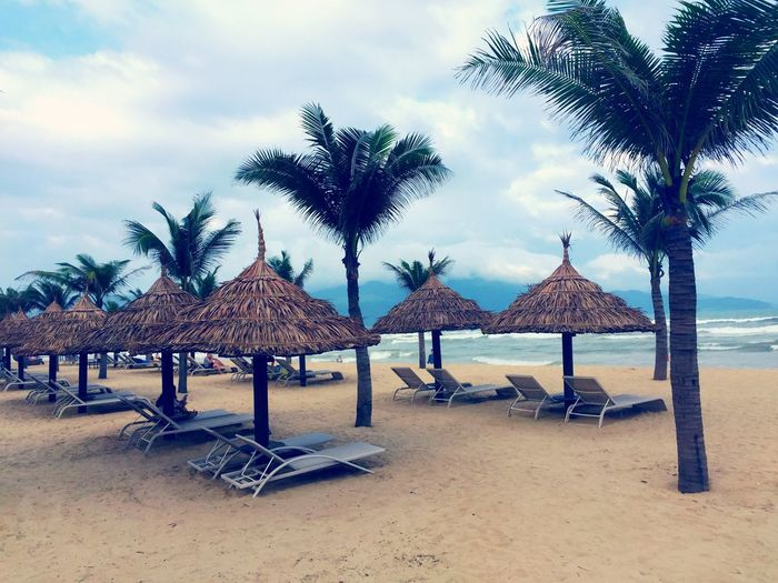 Palm Tree Beach Sky Nature Sand Sea Beauty In Nature No People Cloud - Sky Water Danang Traveling In Vietnam