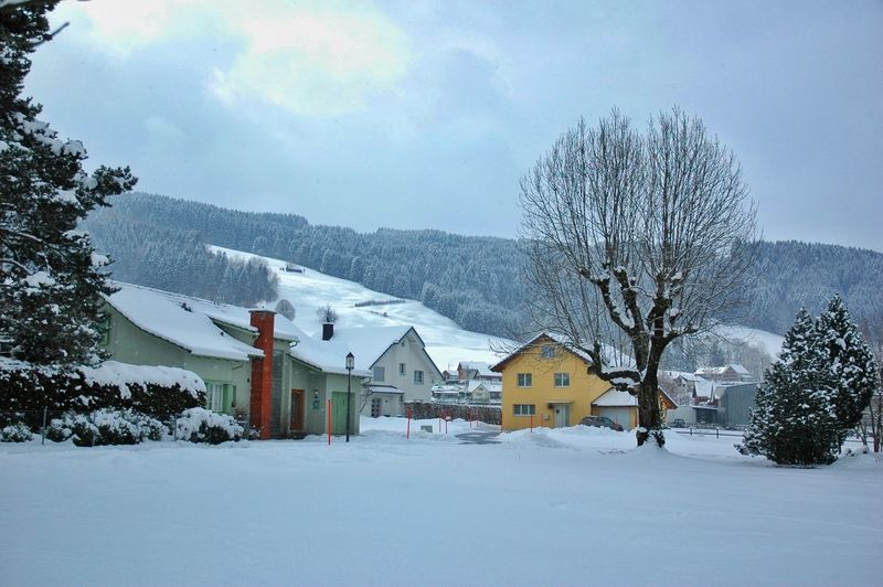 let it snow ❄ Street Photography Rural Landscape Winter_collection Zürich Switzerland 🇨🇭 Rural Scene Nature Beauty In Nature Tree Snow Snowing Cold Temperature Mountain Winter Rural Scene Polar Climate House Sky Deep Snow Snowcapped Mountain Extreme Weather Cottage Barn