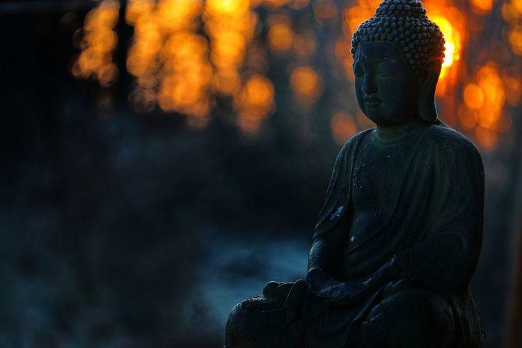 Buddha Sunlight Sunset Religion Spirituality Adult Statue Rear View Beauty Human Back Outdoors