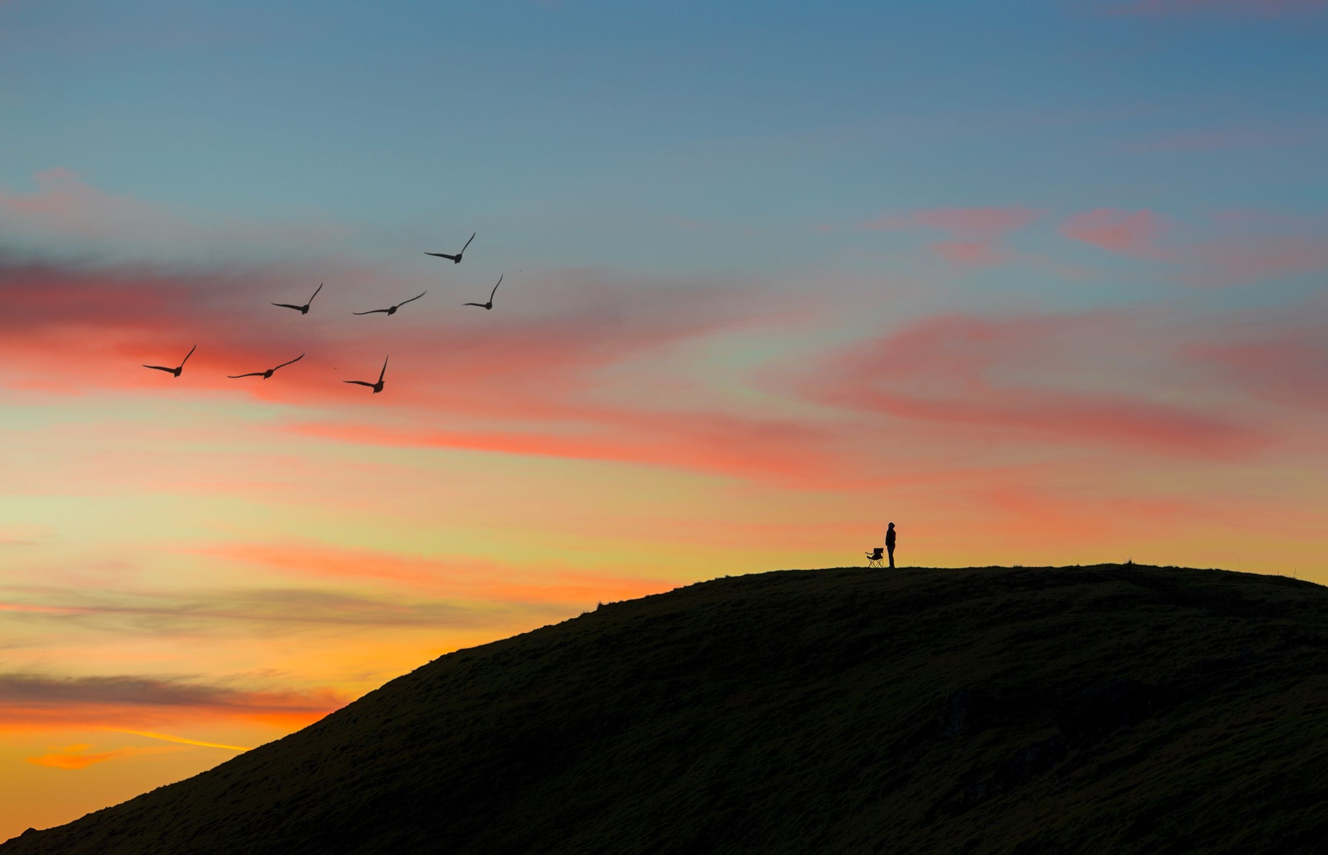 sunset, silhouette, bird, flying, sky, animal themes, scenics, beauty in nature, tranquil scene, animals in the wild, mountain, orange color, tranquility, landscape, nature, low angle view, cloud - sky, wildlife