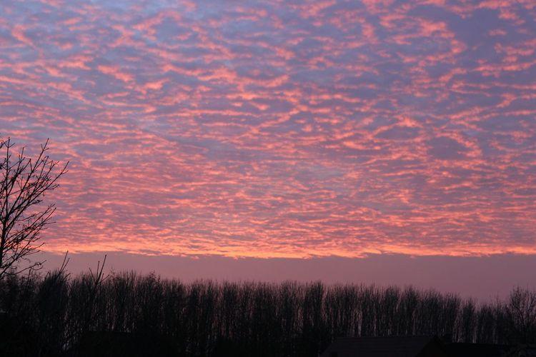 Lila Wolken. Sonnenuntergang