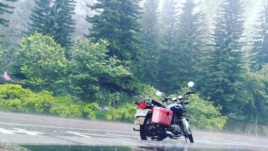 M3H•258 Rainy Days