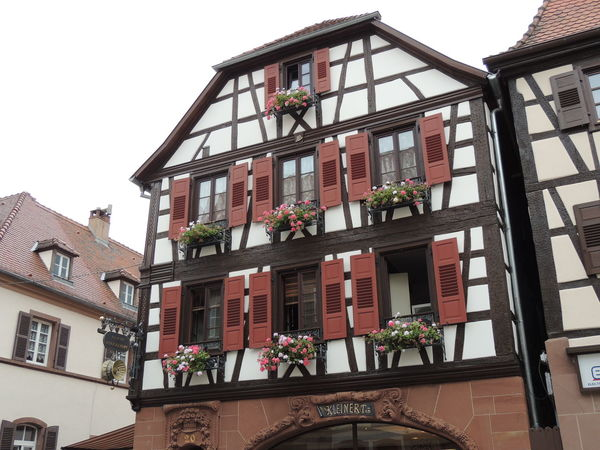 Alsace Alsace France Apartment Architectural Feature Architecture Balcony Building Building Exterior Built Structure City Clear Sky Day Flower Growth Historic History Low Angle View No People Petal Plant Railing Residential Building Residential Structure Sky Window