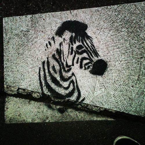 31520 Street Art Zebra