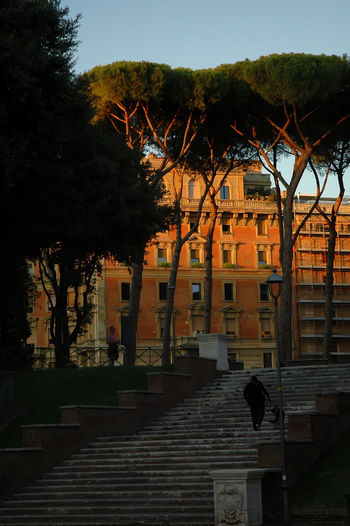 Roma Sunset In The City  Afternoon Sun Architecture Building Exterior Built Structure One Person Outdoors Park Steps Tree