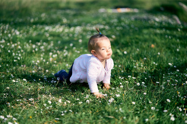 Cute boy with toy on field