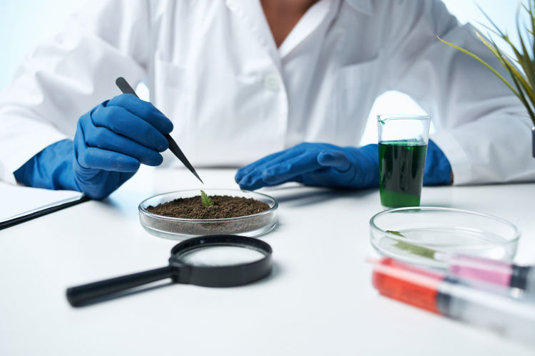 Midsection of doctor examining plant and mud on table