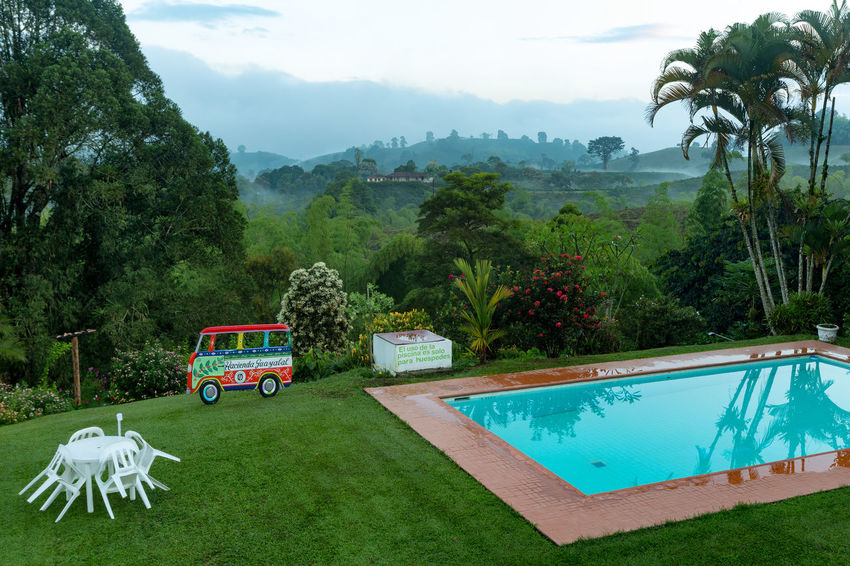 CHINCHINA, COLOMBIA - JUNE 3: A pool at a coffee plantation at dawn near Chinchina, Colombia on June 3, 2016. Andes Caffeine Coffee Colombia Farm Latin Manizales Nature Plant South Travel America Arabica Bean Caldas Chinchina Colombian  Drink Landscape Mountain Organic Plantation Robusta Triangle Tropical