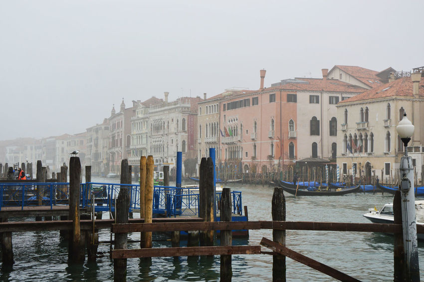 Venice, Italy Architecture Canal Grande Canal Grande In San Marco Square Grand Canal Grand Canal Of Venice Grand Canal Square Grand Canal Venice Italy Venice Venice Area Venice Beach Venice Biennale Venice By Night Venice Canals Venice Carnival Venice Carnivale Venice Gondola Venice Italy Venice Lagoon Venice Mask Venice Masks Venice Piazza Venice View Venice, Italy Venice, ıtaly
