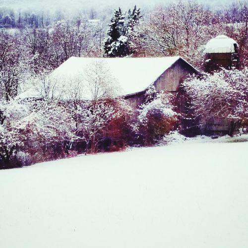 Duncannon Duncannon, Susquenita Farm Snow På