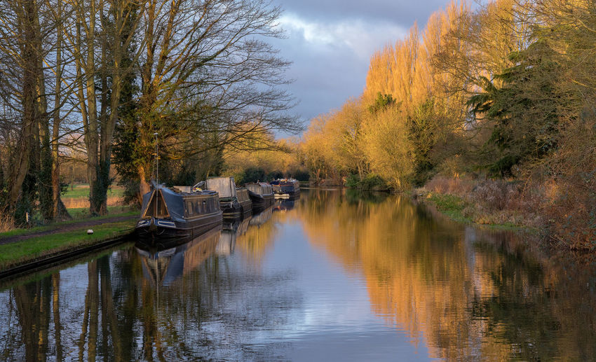 Boats moored with trees reflection in grand union canal against sky