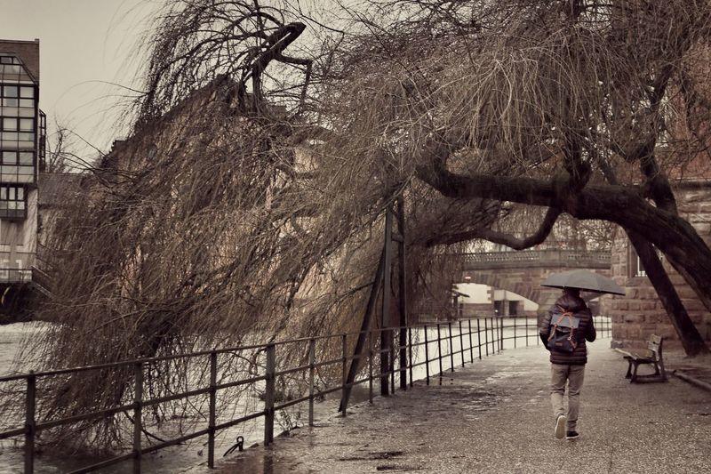 Rain Strasbourg