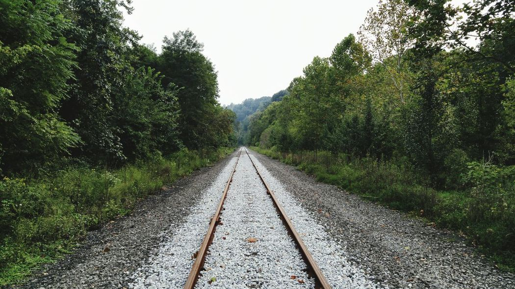 Transportation Rail Transportation Outdoors No People Tree The Way Forward Railroad Track Day Sky Gravel Tupponce Photography David Tupponce Bridgeville PA Pennsylvania United States Of America USA Nature Growth Vanishing Point Perspectives And Dimensions