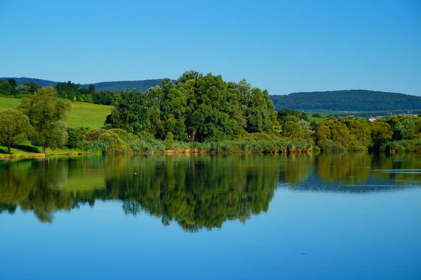 Summer reflections at the lake Hills Beauty In Nature Blue Blue Sky Clear Sky Day Forest Lake Mountain Nature No People Outdoors Pilis Pilisszántó Reflection Scenics Sky Tranquil Scene Tranquility Tree Water Waterfront