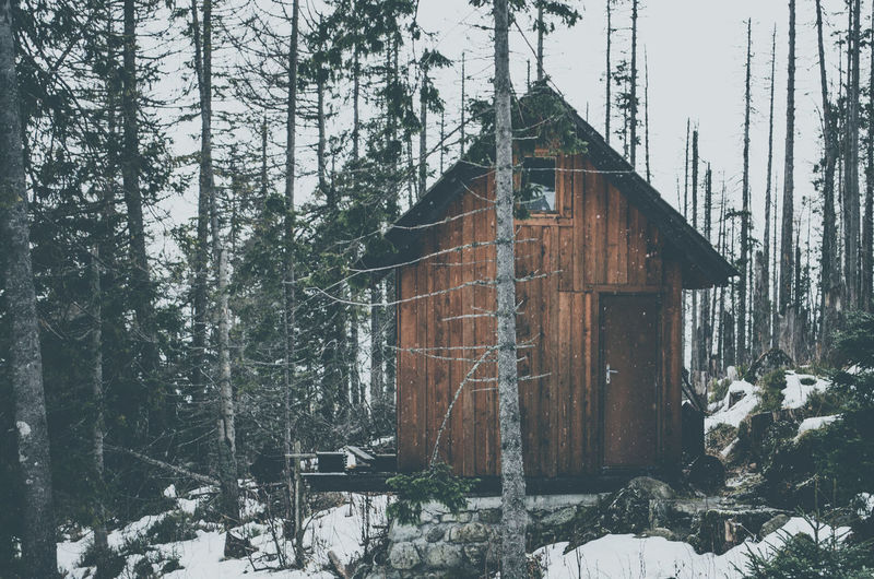 Snow covered house amidst trees in forest