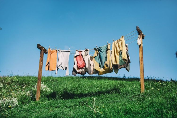 hobbiton movie set Drying Hanging Clothesline Sky Laundry Clothing Nature Grass Textile Clear Sky Day Plant No People Blue Low Angle View Cleaning Clothespin Outdoors Sunlight Side By Side Hobbitonmovieset Hobbiton Hobbiton Movie Set Tours Newzealandphotography Movie Prop