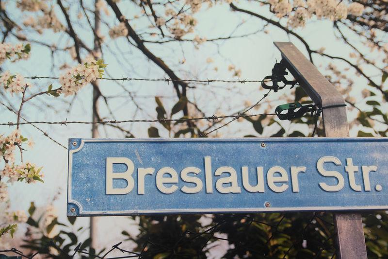 Breslauer