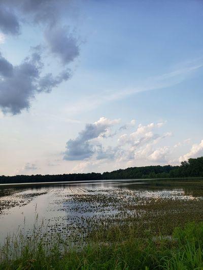 Water Rural Scene Agriculture Sky Landscape Cloud - Sky
