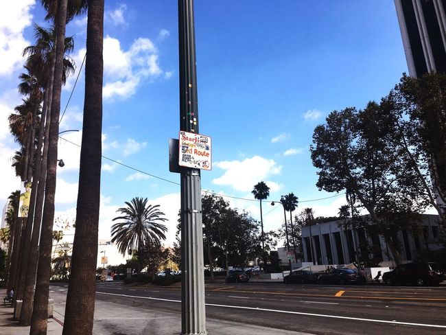 Miracle Mile Los Angeles, California Check This Out Roadside
