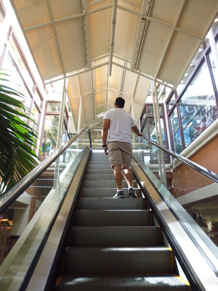 """Enjoying the day with one of my sons"" - Bayside Marketplace Bayside Marketplace Bayside Miami Modern Architecture Susan A. Case Sabir Unretouched Photography Architecture Built Structure Day Escalator Hand Rail Indoors  Leisure Activity Lifestyles Low Angle View Men One Person People Railing Real People Rear View The Way Forward Tropical Architecture Tropical Climate Walking"