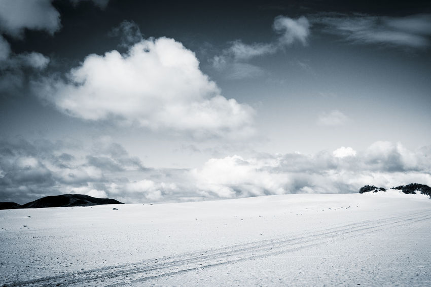 Las Dunas beach - Cloudscape Desert EyeEm Best Shots - Black + White Hello World Land Tranquility Arid Climate Beauty In Nature Black And White Cloud - Sky Day Dry Landscape Las Dunas Monochrome Nature No People Outdoors Remote Rural Scene Sand Sand Dune Scenics Sky Tranquil Scene