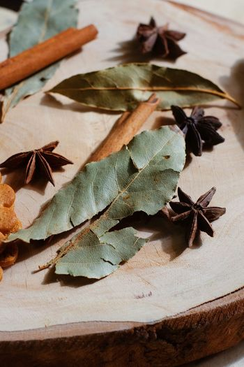 High angle view of leaves on table