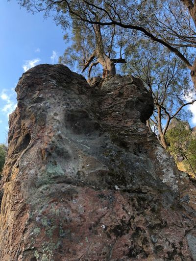 Guardian of the Hanging Rock...
