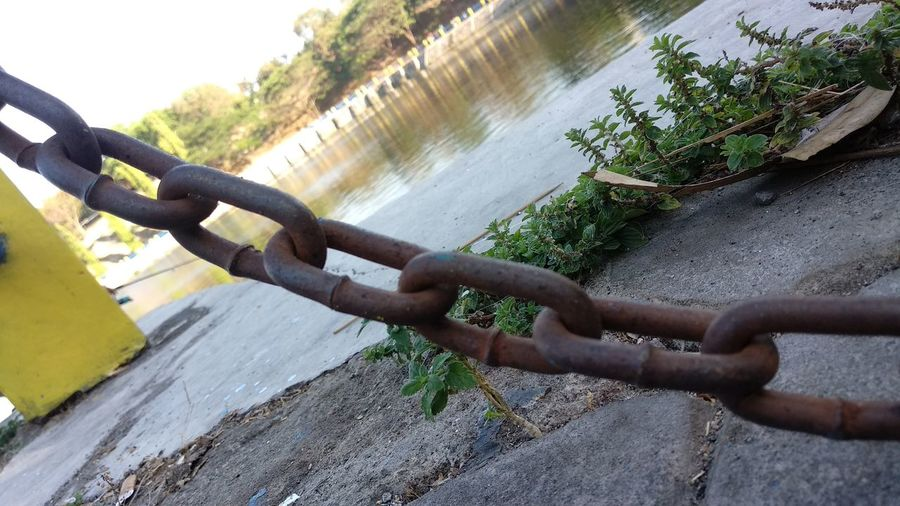 Close-up of rusty metal fence by river
