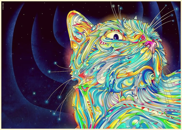 Multi Colored Science Close-up Black Background Psyart Pshycodelic Cat Photography
