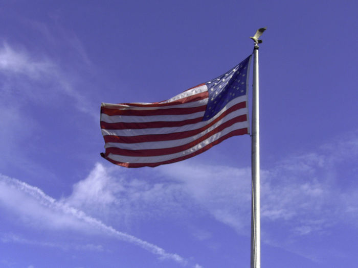 USA FLAG Blue