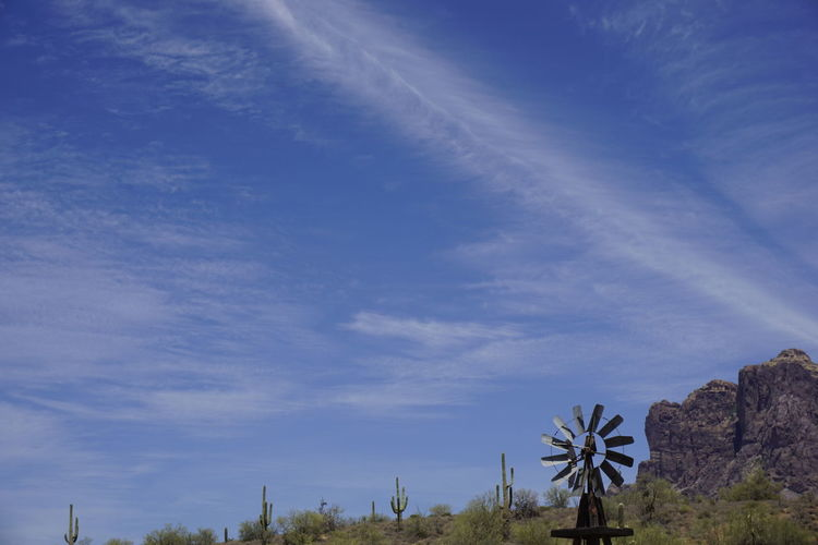Arizona Beauty