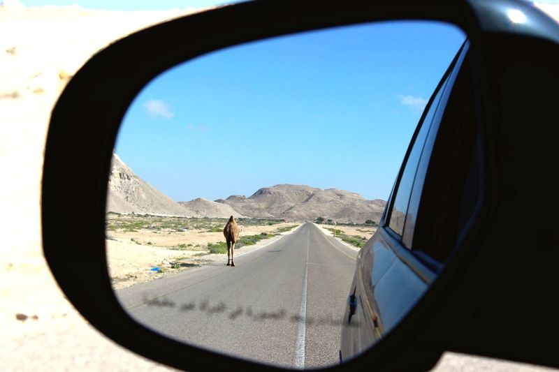 Cropped image of car on landscape