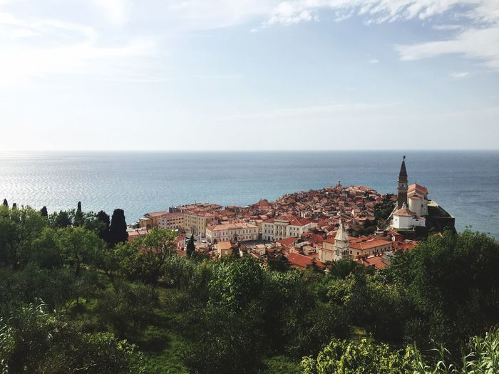 Piran, Slovenia Sea Horizon Over Water Water Architecture Built Structure Tree Building Exterior High Angle View Sky Scenics Tranquil Scene Roof Ocean Blue Beauty In Nature Town Cloud Nature Tranquility Day Piran Slovenia