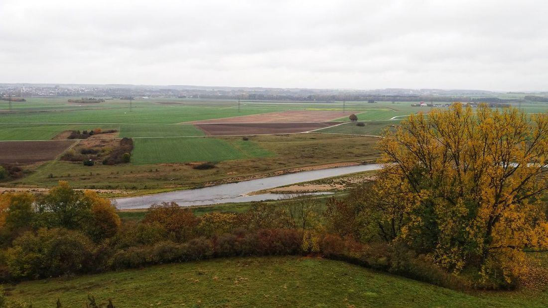 EyeEm Man EyeEm Selects Rural Scene Agriculture Field Social Issues Farm Crop  Landscape Sky Terraced Field
