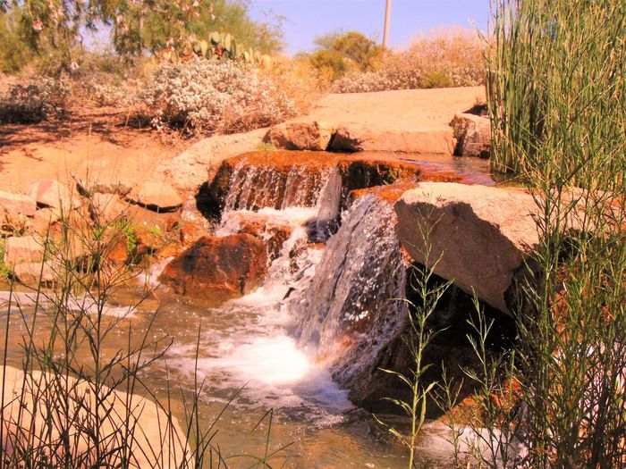 Waterfall Beauty In Nature Day Environment Flowing Flowing Water Idyllic Motion Natural Landmark Nature Non-urban Scene Outdoors Plant Power In Nature Remote Rock Rock - Object Rock Formation Scenics Stream Tourism Tranquil Scene Tranquility Travel Destinations Water Waterfall