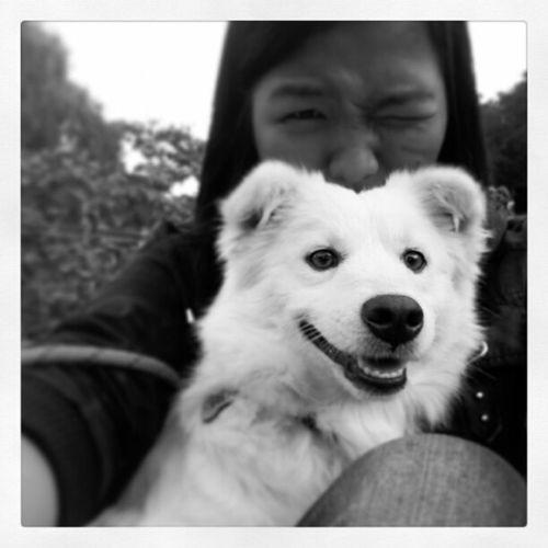 A date with Iura. Haha Panagbenga Baguio Dogs Personal animals instafollow instagram instafollowback autofollow samsung sky nature