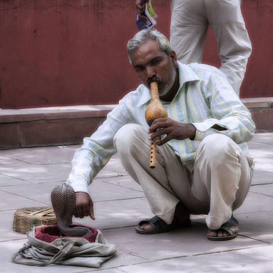 Tradición en el Rajasthan #rajasthan #traditional #jaipurforts #amberfort #India #COBRA #domador City Men Sitting Actor Historic History