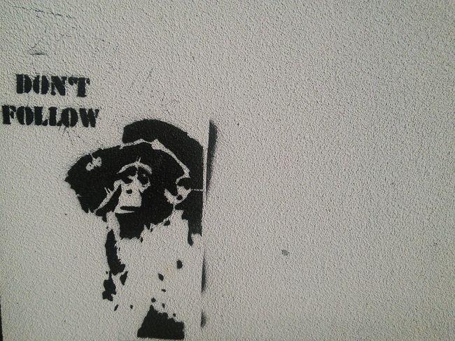 Streetart Monkey Paris Larue