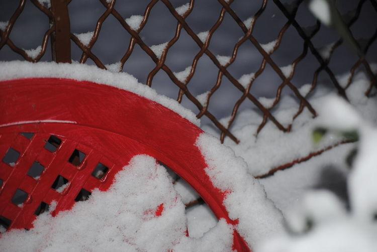 Close-up Cold