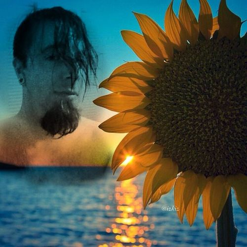 Sunflower Ginovaglivielo Sexyguy Selfportrait Hotguysoninstagram Blending Images malemodel