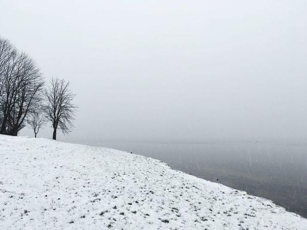 Snow Winter Cold Temperature Nature Tranquility Weather Tranquil Scene Beauty In Nature Scenics Landscape Outdoors No People Fog Day Bare Tree Tree Sky