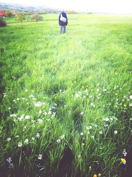 walking the Path To Spring