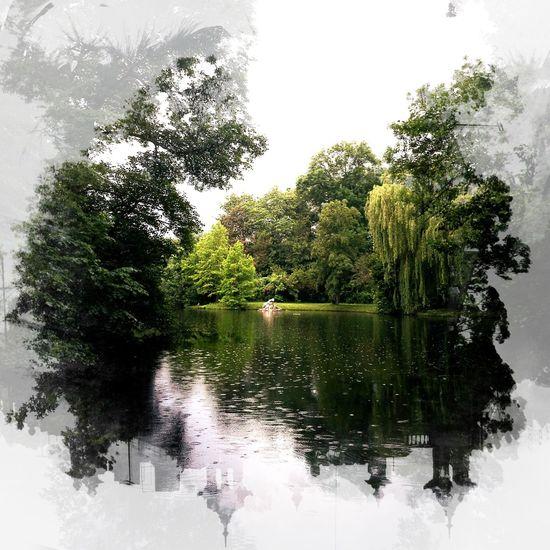 same, same but different - arty 🙂 Same Same But Different Arty ArtWork Artphotography Citypark Park Green Trees Pond Rainy Days Enjoying Life Photooftheday Photos Around You