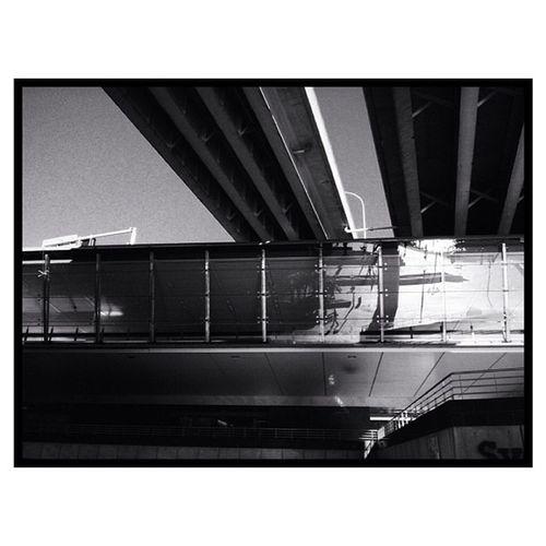 Self-portrait 2 . Sydney Street Photography selfportrait vscocam