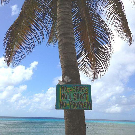 No shoes, No shirt, No problem ☀️🌴🏝😎 Palm Palm Tree Sea Beach Island Islandlife Easyliving Easy Life Caribbean Turks And Caicos Summer Summertime Holidays Relaxing Under The Palm Tree Under The Sun Slogan Tropical