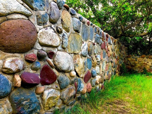 Hand built rock walls Tree Muti Colored Wall - Building Feature EyeEmNewHere Day No People Nature Plant Solid Rock Outdoors